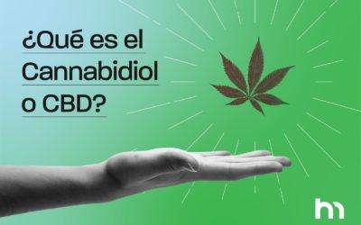 ¿Qué es el cannabidiol o CBD?