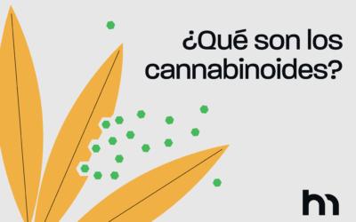 ¿Qué son los cannabinoides?